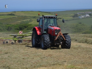 Yr Hafan holiday cottages country and coastal views - cutting our field