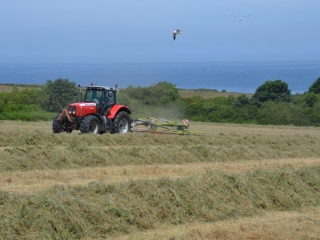 Yr Hafan - fabulous sea views from our fields
