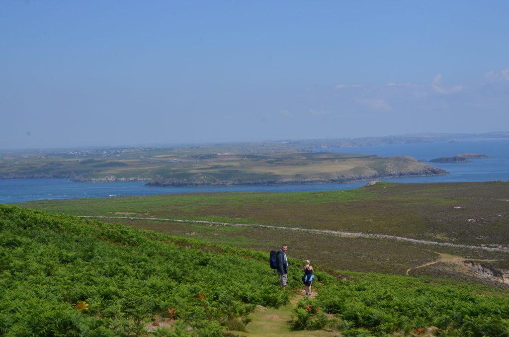 Ramsey Island - views across to St. Davids Head