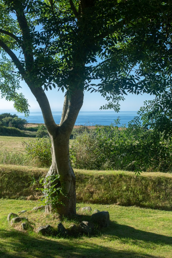 Yr Hafan landscaped gardens with sea views towards Strumble Head