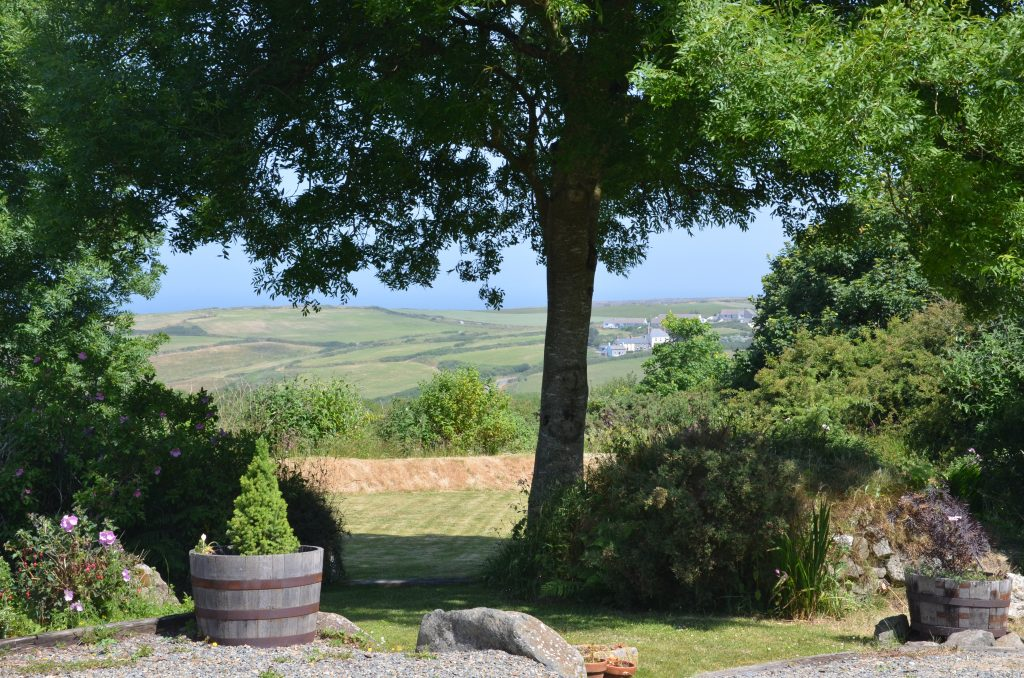 Yr Hafan - Summer in the garden and sea views towards Pencaer Head